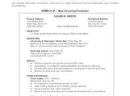 Examples Of Resume Objectives Impressive Resume Objective Statement Resume Objectives Samples Resume