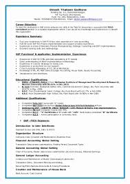 Sap Sd Consultant Sample Resume Sap Mm Certified Consultant Resume Resume For Study 14