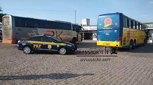 ANTT e PRF apreendem dois ônibus em fiscalização contra transporte  clandestino em Alagoas