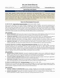 Devops Sample Resume New 51 New Executive Summary Resume Samples
