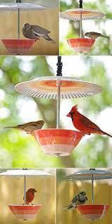 Богат избор от професионално подбрани висококачествени хранилки и поилки за птици. Simpatichni Hranilki Za Ptici Rozali Com