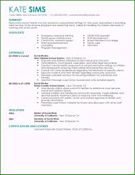 Resumes Objective 39 The Ultimate Social Worker Resume Objective You Should Know