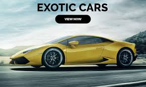 best exotic car al miami luxury