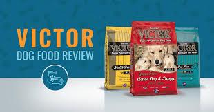 Victor Dog Food Review Recalls Ingredients Analysis In