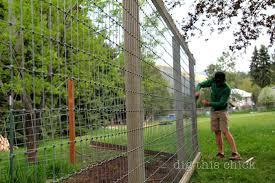 design deer fence designs good looking garden fencing deer fence for garden design deer fence designs vegetable garden deer fence