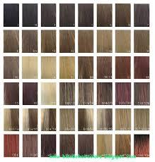 28 Albums Of Xp Hair Colour Chart Explore Thousands Of