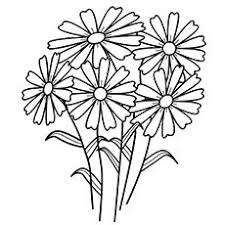 Small Picture draw daisies Print This Page Spring Flowers Coloring Pages