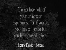 Dreams And Aspirations Quotes Best of Do Not Lose Hold Of Your Dreams Or Aspirations Beauty Quote