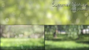 summer nature backgrounds. play preview video summer nature backgrounds