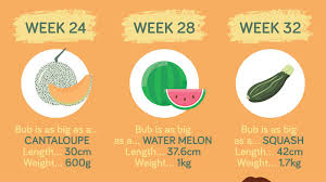 Baby Weeks Chart Baby Growth Chart How Big Is Your Baby This Week Infographic