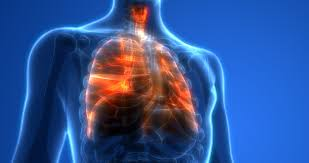 Outbreak of Lung Injury Associated with the Use of E-Cigarette, or ...