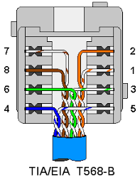 cat5e wiring diagram end terminating wall plates wiring cat5 eia tia t568b wall plate outlet