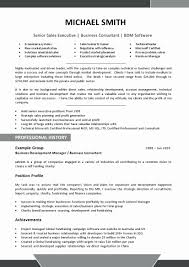 Creative Director Resume Sample Latter Example Template