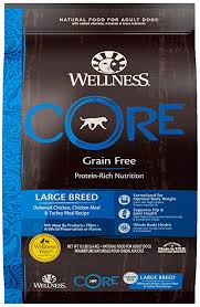 What Is The Best Dog Food For A Great Dane