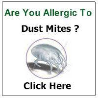 775 best Dust Mite images on Pinterest in 2018 | Dust mites, Health ...
