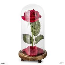 sympathy eternity rose in a glass dome