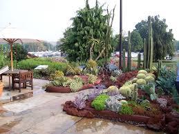 desert garden display at u s botanic garden