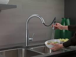 Older Delta Kitchen Faucets Essa Kitchen Collection