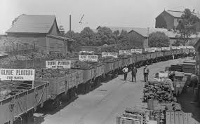 and the industrial revolution impact of the first ploughs made by clyde engineering of granville in sydney leave the factory loaded into