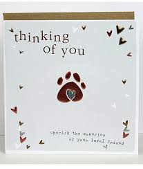 sympathy card pet pet sympathy cards molly mae thinking of you cards for dogs cats