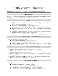 Resume Cv Example 8 Free