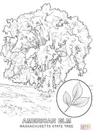 Small Picture Coloring Pages Draw A Tree 1 olegandreevme