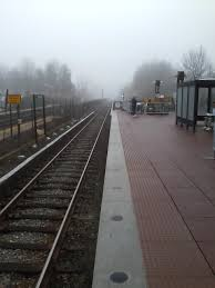 photo essay the metro rider s life the fly misty morning
