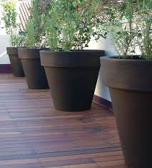 potted plant saucers planters big flower pot plants for large pots in sun  extra large flowers