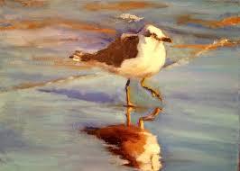 norma wilson original oil sea gull bird ocean coastal seascape beach painting art