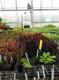 Charter of members of gardening associations