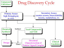 Clinical Trial Process Flow Chart Ppt Preclinical Development Wikipedia