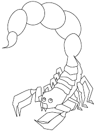 Small Picture Scorpion Animals Coloring Pages Coloring Book