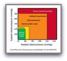 High Blood Pressure Symptoms Signs And Risk Factors