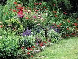 maintaining a perennial garden
