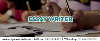 apa format essay example paper english essay writing examples  health care essay high school sample essay also english essays examples of a thesis statement for a narrative essay there are different types of essay