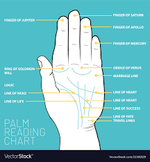 Download Palm Chart Palm Reading Chart Palmistry Map Of The Palms
