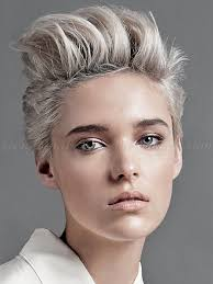 Short Hairstyle Women 2015 short hairstyles 2015 women faux hawk short funky hairstyles 3669 by stevesalt.us