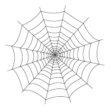 Small Picture spider web You will find down bellow a spider web coloring sheet