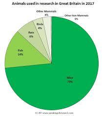 Uk Animal Research Statistics Speaking Of Research