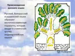 Презентация на тему Русский язык национальное богатство  2 Происхождение