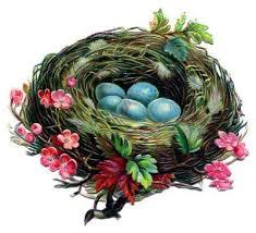 bird nest with eggs clipart. Brilliant Bird Vintage Clip Art U2013 Pretty Nest With Blue Eggs In Bird With Clipart P