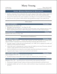 Example Resume Summary Resume Summary Examples Entry Level Resume Templates 25
