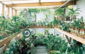 greenhouse gardening in winter space saver tips for winter vegetable gardening state by state gardening web greenhouse gardening in winter