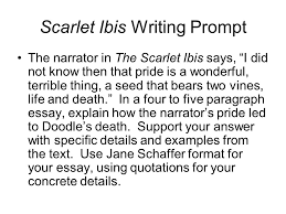 the scarlet ibis essay outline ppt video online  scarlet ibis writing prompt
