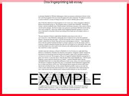 dna fingerprinting lab essay term paper academic service dna fingerprinting lab essay unique dna ¥dna fingerprinting ðthe used for the unambiguous