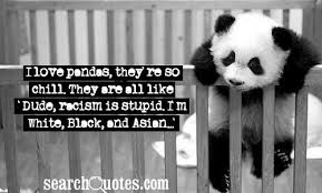 Quotes On Racism Fascinating Racism Quotes Quotes About Racism Sayings About Racism