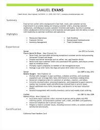 Resume Summary Example Steadfast40 Fascinating Resume Summary Examples For Retail