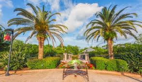 beautiful bench in florida botanical gardens largo florida