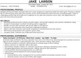 cv professional profile examples uk types of resumes for job within example  personal on resume 23