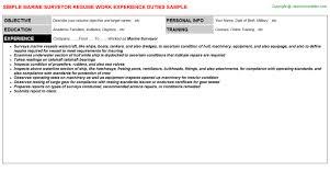 Sample Resume Land Surveyor Cv Format In Word Mr Resume